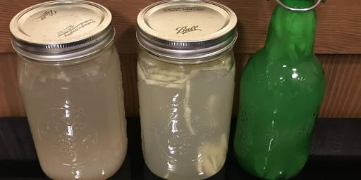 Ferments: Making Milk Kefir, Water Kefir, and Vegetable Ferments