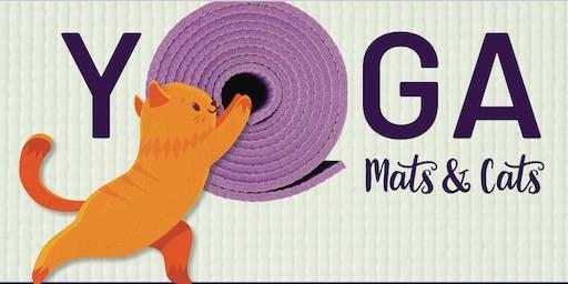 Mats & Cats Yoga