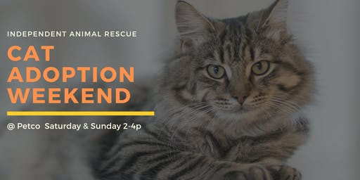 Independent Animal Rescue Cat Adoption Weekend @ Petco Renaissance