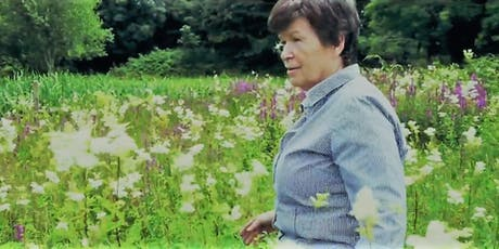 Herb Walk, Talk and Foraging in Galway with Dr Dilis Clare Apothecary tickets