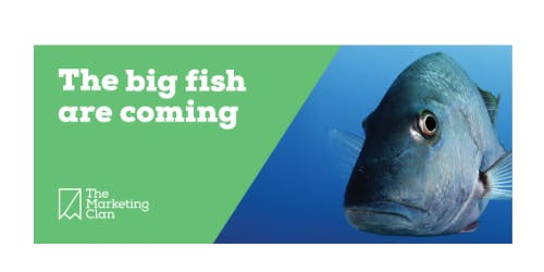 Lunch N Learn - The big fish are coming...