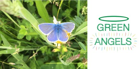 Green Angels - Wildlife ID Course (3 day course) tickets