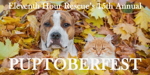 Sponsorships for Eleventh Hour Rescue's 15th Annual Puptoberfest
