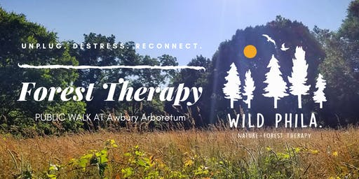 Forest Therapy at Awbury Arboretum