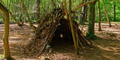 Family activity: woodland survivors