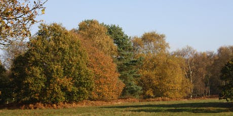 Autumn Views and Hues tickets