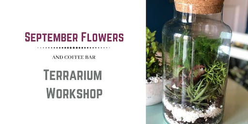 Terrarium and Gin & Tonic Workshop