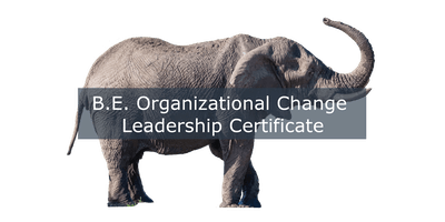 B.E. Organizational Change Leadership Certification Program