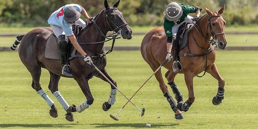 Polo & Picnic Days (Per Car Ticket ~ up to 5 People): Fen Tiger Tournament