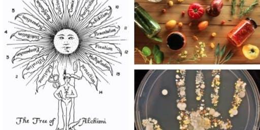 Den Inneren Garten pflegen - Pflanzenintelligenz, Mikrobiom und Fermentation für nachhaltige Gesundheit