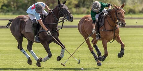 Polo & Picnic Days (Per Car Ticket ~ up to 5 People): Harvest Hawkie Tournament tickets