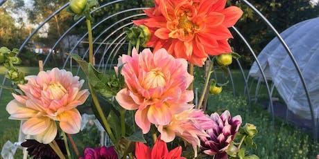 Cut Flowers: Advanced Annuals, Post-Harvest Handling & Season Extension tickets