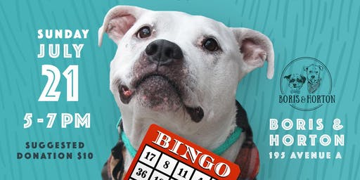 Badass Brooklyn Animal Rescue's Senior Bingo Night