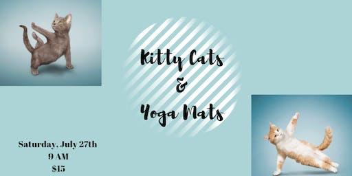 Kitty Cats & Yoga Mats