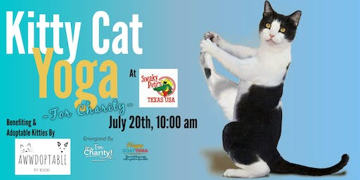 Kitty Cat Yoga at Sneaky Pete's: Benefiting Awwdoptable Pet Rescue