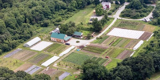 Volunteer at Gaining Ground Farms with the Boston Spartans
