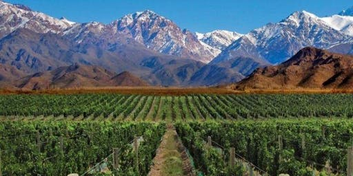 Argentina & Friends Lab: Great Wines of South America
