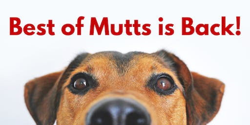 Harper's Best of Mutts Show