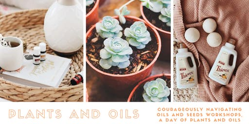 Plants and Oils Workshop