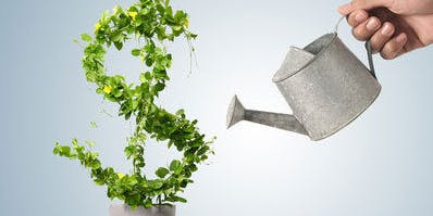 Transition Tuesdays Seminar Series - Investing 101, show me the money!