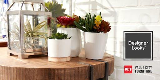 Sips and Succulents: A DIY Workshop