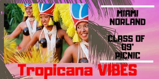 "09' Norland Picnic ""Tropicana Vibes"""