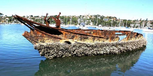 Harbour Cruise: Shipwrecks of Sydney Harbour