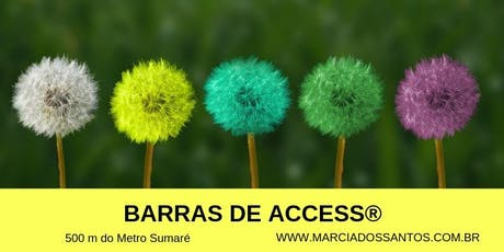 Curso de Barras de Access® 20/07, com Marcia dos Santos ingressos