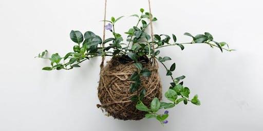 Gardening in Notting Hill: Kokedama String Plants