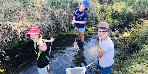 Go with the Flow - Community Stormwater Education Workshop