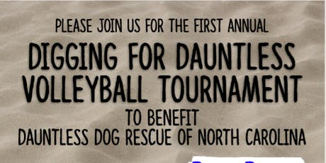 Digging for Dauntless - Beach Volleyball Fundraiser tickets