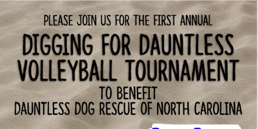 Digging for Dauntless - Beach Volleyball Fundraiser