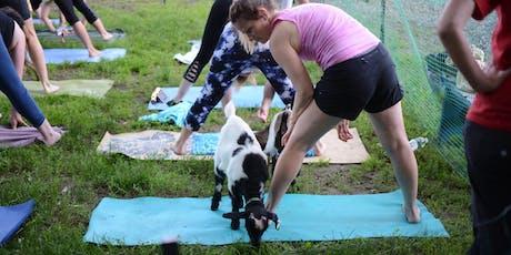 7/27 Saturday Morning Goat Yoga tickets