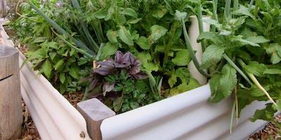 Self watering garden beds workshop