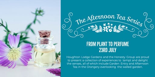 The Afternoon Tea Series - From plant to perfume