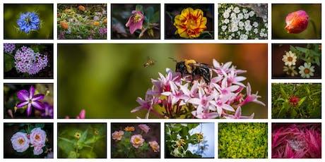 Flower Photography Workshop at Cheekwood tickets