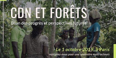 CDN et forêts : bilan des progrès et perspectives futures billets