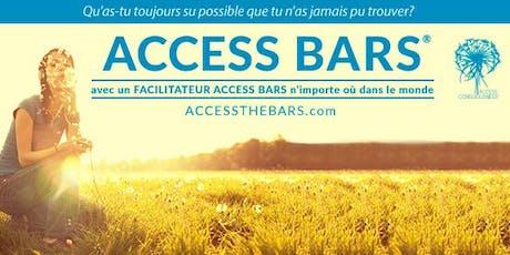 Formation Access Bars® billets