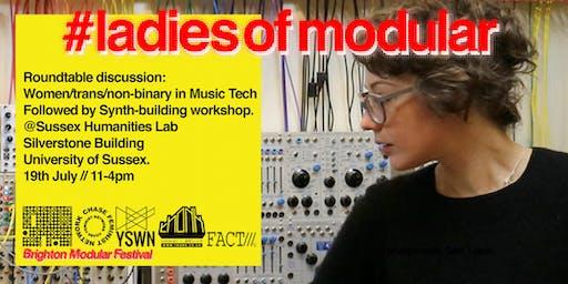 #ladiesofmodular Roundtable & DIY Workshop