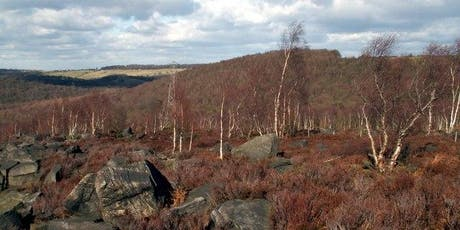 Wonderful Wharncliffe Heath 3 miles (4.8km) 2 hours tickets