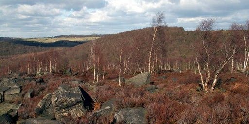 Wonderful Wharncliffe Heath 3 miles (4.8km) 2 hours