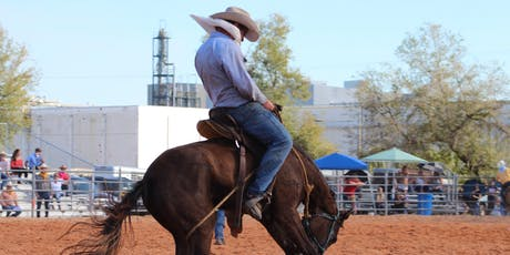 2020 Polk Cattlemen's & UF/IFAS Trade Show and Ranch Rodeo Supporter Opportunities tickets