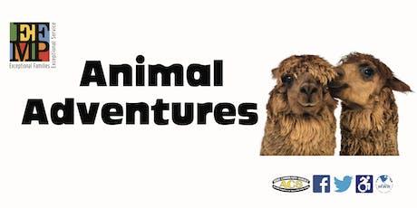 Animal Adventures tickets