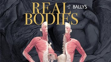 """Real Bodies"""