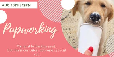 Network Now | Pupworking