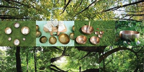 Shinrin-Yoku Sound Bath: Forest & Sound Bathing in Central Park tickets