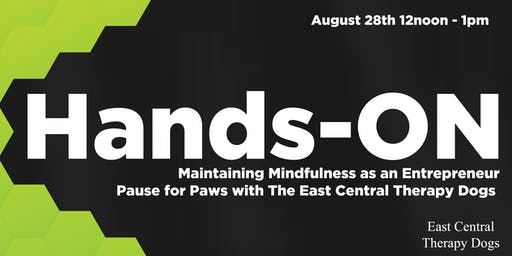 Hands-ON: Maintaining Mindfulness as an Entrepreneur - Therapy Dogs
