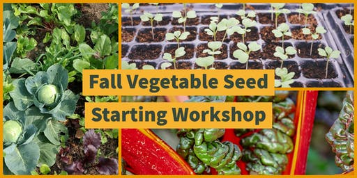 Fall Vegetable Seed Starting Workshop