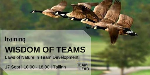 Wisdom of Teams: Laws of Nature in Team Development