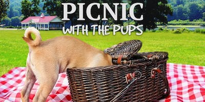 Picnic With The Pups